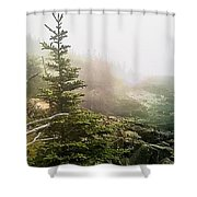 Sunset In The Pine Forest Shower Curtain