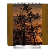Sunset In The Pine Woods Shower Curtain