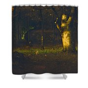 Sunset In The Woods Shower Curtain