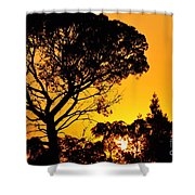Sunset In Tujunga Shower Curtain