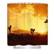 Sunset, Joshua Tree Park, California Shower Curtain