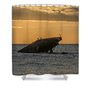 Sunset On The Wreck Of The Concrete Ship Atlantus Shower Curtain