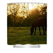 Sunset Over A Spring Meadow Shower Curtain