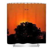 Sunset Over Botswana Shower Curtain