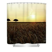 Sunset Over Cornfield Shower Curtain