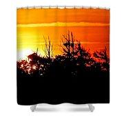 Sunset Over Hatteras Maritime Forest Shower Curtain