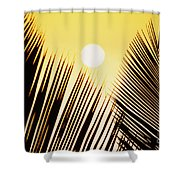 Sunset Palm Fronds Shower Curtain