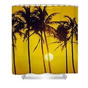 Sunset Palms And Family Shower Curtain