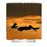 Sunset Race Shower Curtain