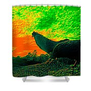 Sunset Rooster Shower Curtain