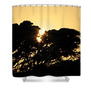 Sunset Silhouette II Shower Curtain