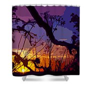 Sunset Silhouette Shower Curtain