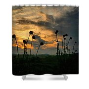 Sunset Silhouettes In June Shower Curtain