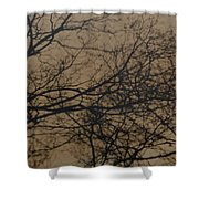 Sunset Snow Shower Curtain
