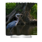 Sunset Stroll By James Figielski Shower Curtain