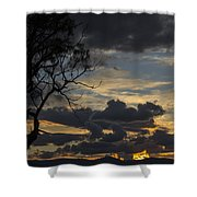 Sunset Study 1 Shower Curtain