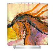 Sunset Submission Shower Curtain