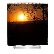 Sunset Summer Shower Curtain