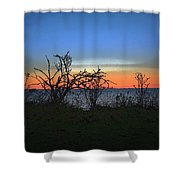 Sunset Through The Branches Shower Curtain