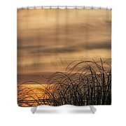 Sunset Through The Seagrass Shower Curtain