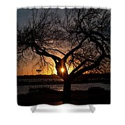 Sunset Through The Tree Shower Curtain