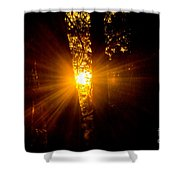 Sun Bursting Through The Trees, Chiloquin Oregon Shower Curtain