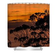 Sunset /torrey Pines Image 2 Shower Curtain