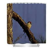 Sunset Tranquility Shower Curtain