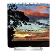 Sunset Tree Florida Shower Curtain