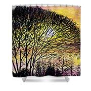 Sunset Tree Silhouette Shower Curtain