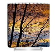 Sunset Tree Silhouette Shower Curtain