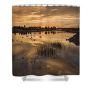Sunset With Pigeons Shower Curtain