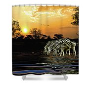 Sunset Zebras At The Watering Hole Shower Curtain
