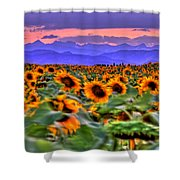 Sunsets And Sunflowers Shower Curtain
