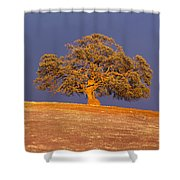 Sunset's Warm Glow Shower Curtain