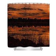 Sunsettia Gloria Catus 1 No. 1 L B. Shower Curtain