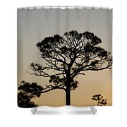 Sunsetting Thru The Trees Shower Curtain