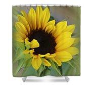 Sunshine Beauty - Sunflower Shower Curtain