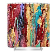 Sunshine Coast Colorful Abstract  Shower Curtain