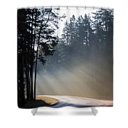 Sunshine In November Shower Curtain