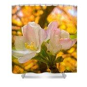 Sunshine On Apple Blossoms Shower Curtain