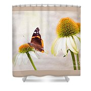 Sunshine On Red Admiral Shower Curtain