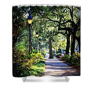 Sunshine On Savannah Sidewalk Shower Curtain