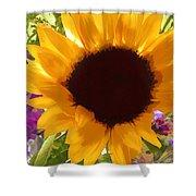 Sunshine Sunflower In The Garden Shower Curtain