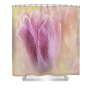 Sunshine Tulips Shower Curtain