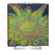 Sunverve Shower Curtain