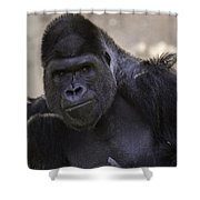 Sup? Shower Curtain