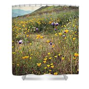 Super Bloom Shower Curtain