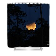 Super Blue Blood Moon Partial Eclipse Shower Curtain