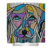 Super Hero - Contemporary Dog Art Shower Curtain